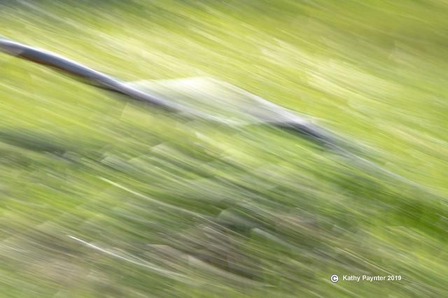 Stick Blur 8650