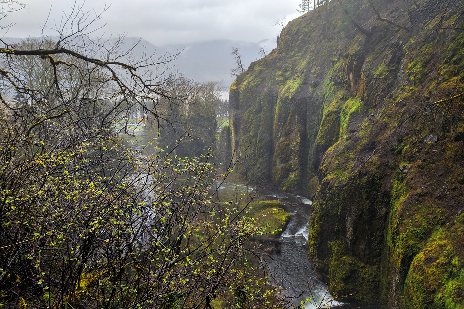 13portland-travel-guide-columbiarivergorge