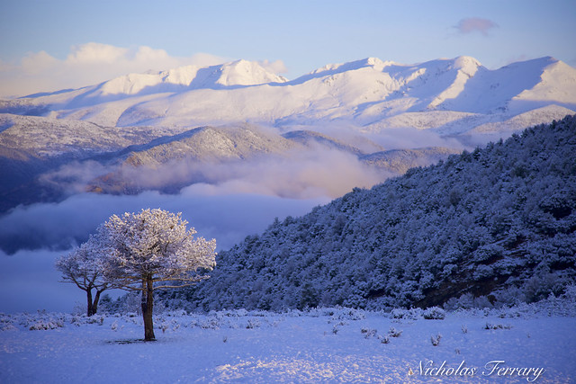 Sunrise In The Pyrenees