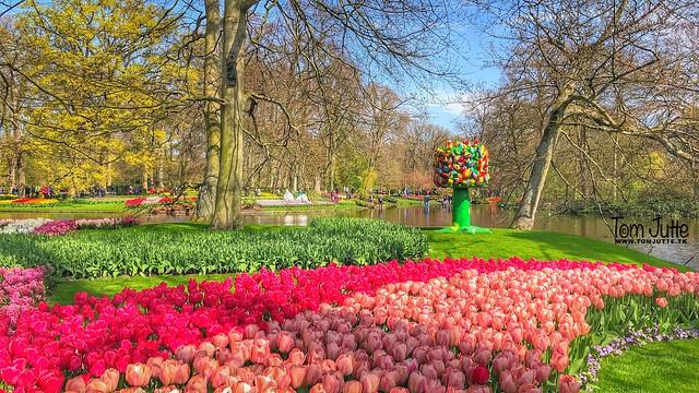Art, Keukenhof Gardens, Lisse, Netherlands -  2395