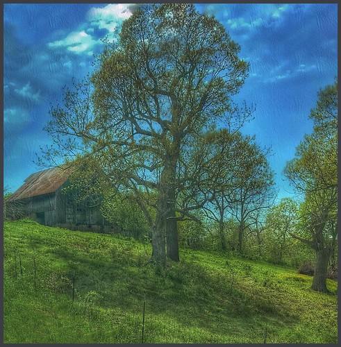 spring hff fence barn hills ozarks missouri