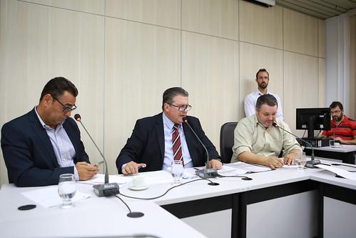 1ª Reunião - Comissão Especial de Estudo
