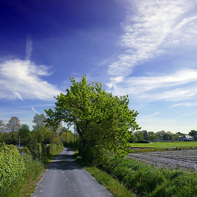 Sainte-Gemmes-sur-Loire, France