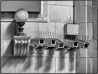 April - Bristling Cameras