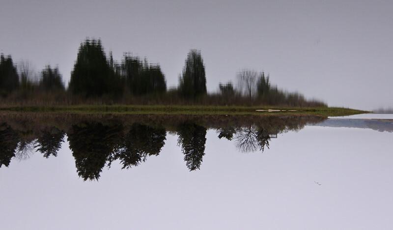 Reflections Like Sound
