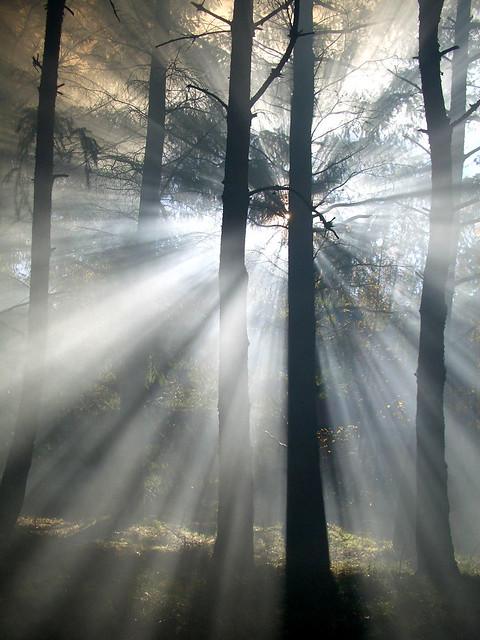 Et la lumière jaillit