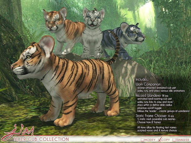 JIAN Tiger Cub Collection (Belle. May '19)