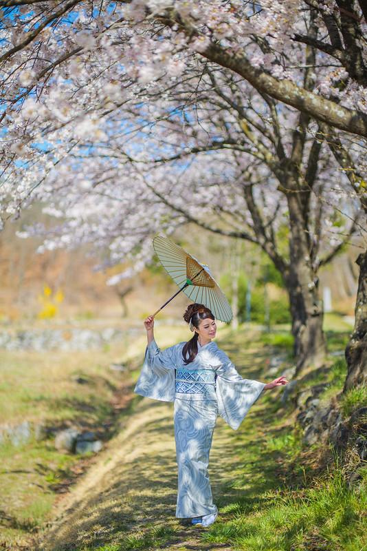 Japanese Spring Scene
