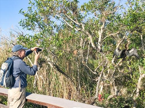 Russ photographing an Anhinga