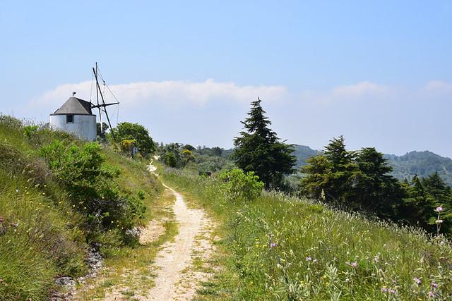 Grassy path beside windmills, Arrabida, Setubal, Portugal