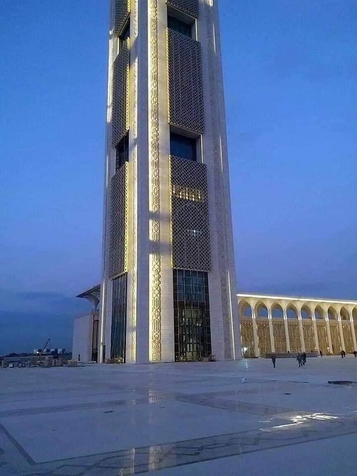 مشروع جامع الجزائر الأعظم: إعطاء إشارة إنطلاق أشغال الإنجاز - صفحة 22 46880865645_870d5e55e3_b