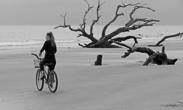black and white ride... Driftwood Beach