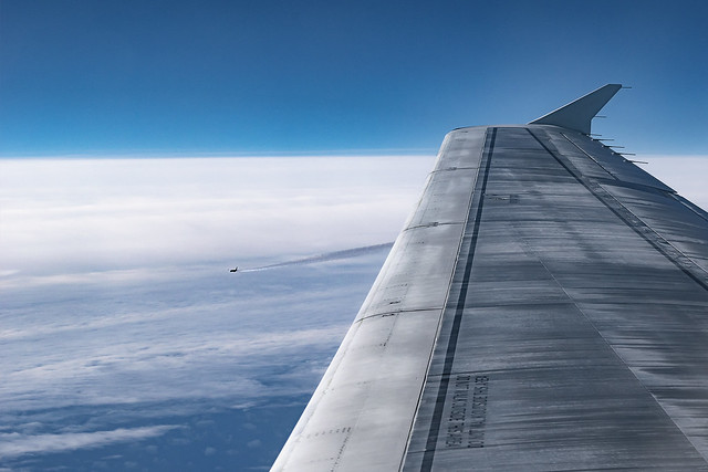 Flying under wing