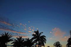 sunset - Playa Pesquero, Holguin, Holguín Province, Cuba - Feb 2019