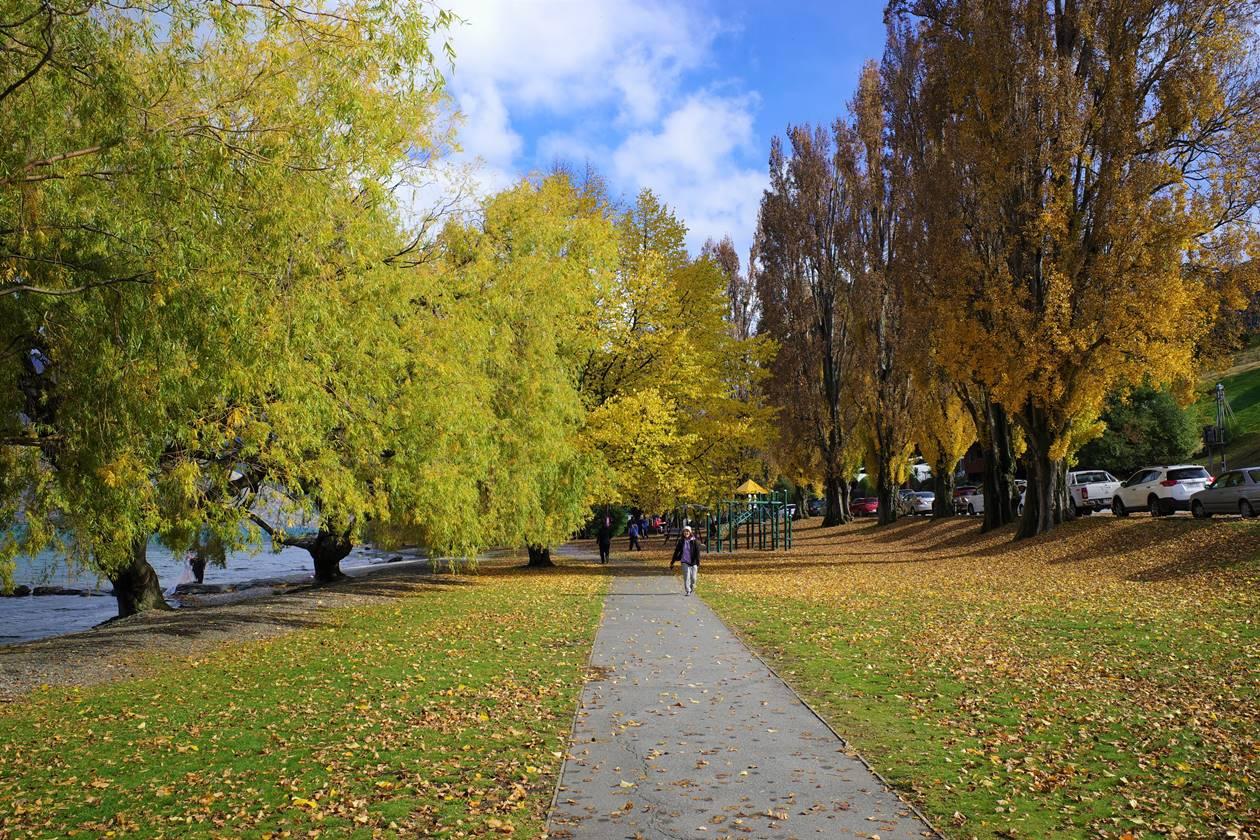 ニュージーランド クイーンズタウンの紅葉