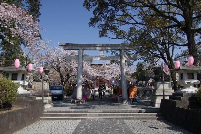 fujisanhonguusengentaisha_004