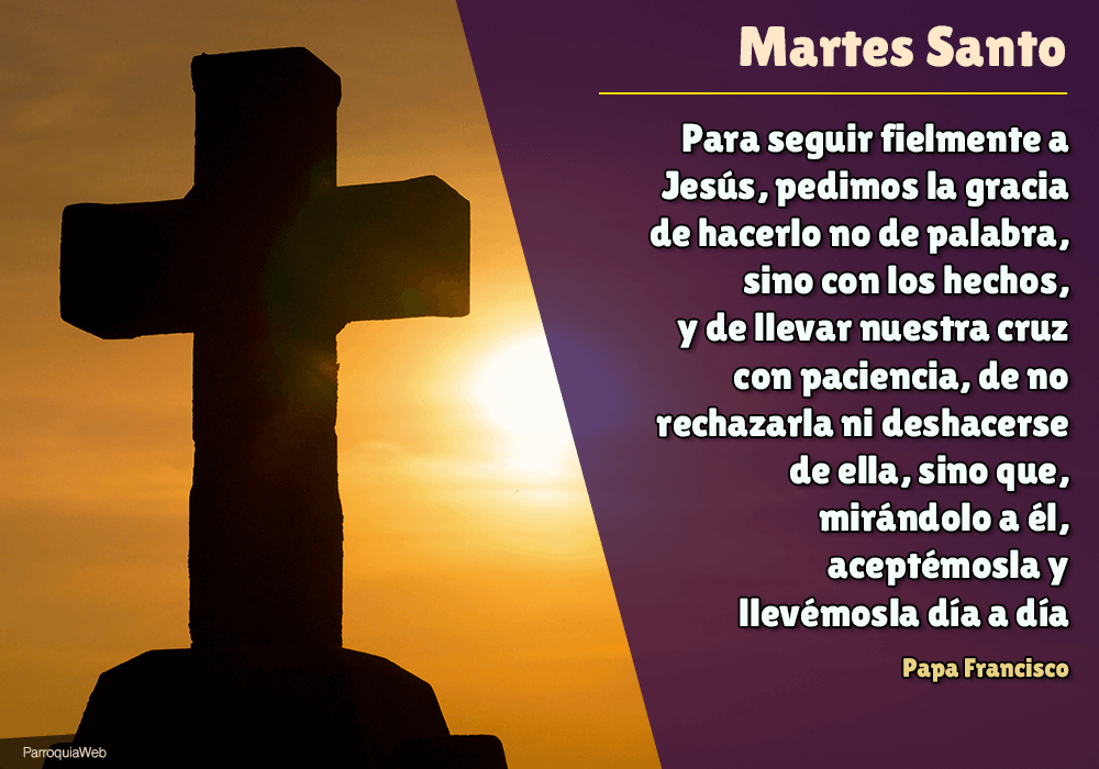 Para seguir fielmente a Jesús, pedimos la gracia de hacerlo no de palabra, sino con los hechos, y de llevar nuestra cruz con paciencia, de no rechazarla ni deshacerse de ella, sino que, mirándolo a él, aceptémosla y llevémosla día a día - Papa Francisco