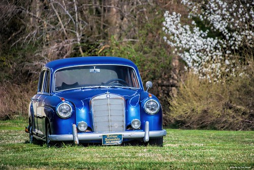 metallicblue lowerslowerdelaware lsd lewes lewesde delaware de sussexcounty car automobile auto spring springtime springday springflowers bradfordpear