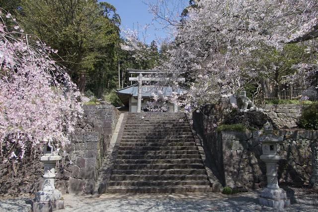 murayamasengenjinja_005