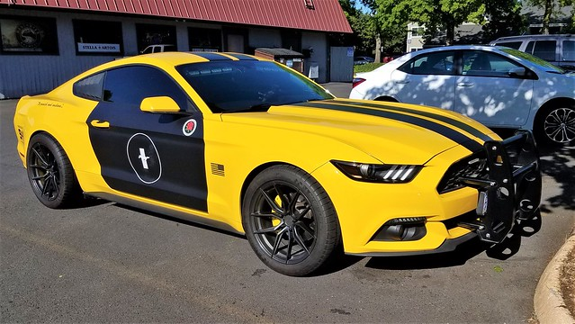 20190508_171834 (3) Police Interseptor (Mustang)