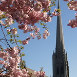 St Walburge's spire in Spring