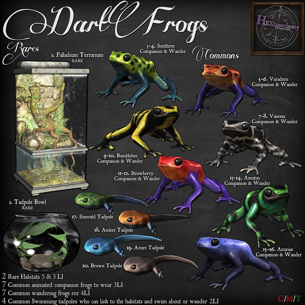 Dart Frog Gacha