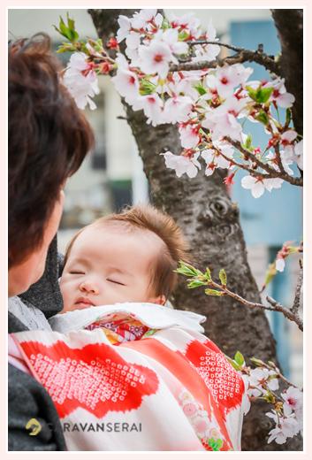初宮参り 女の子赤ちゃんと赤い産着 桜の花