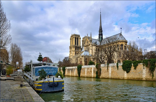 Notre Dame de Paris will return  1/2