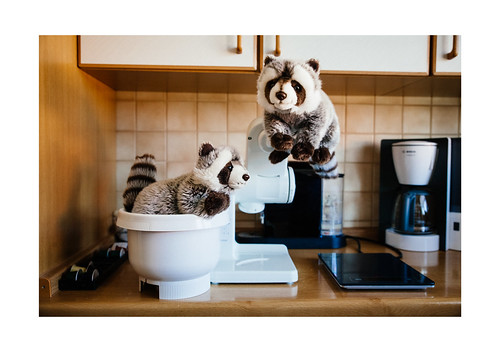 Two Racoons in the Bakery | by xockisfriends