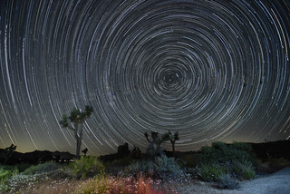 Star Trails at Ryan Campground in Joshua Tree National Park