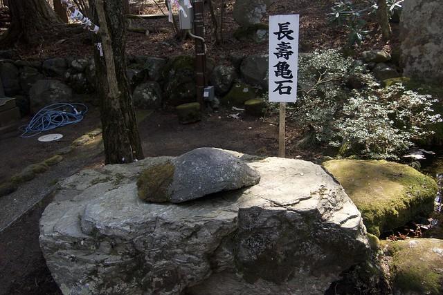 fujisengenjina_022