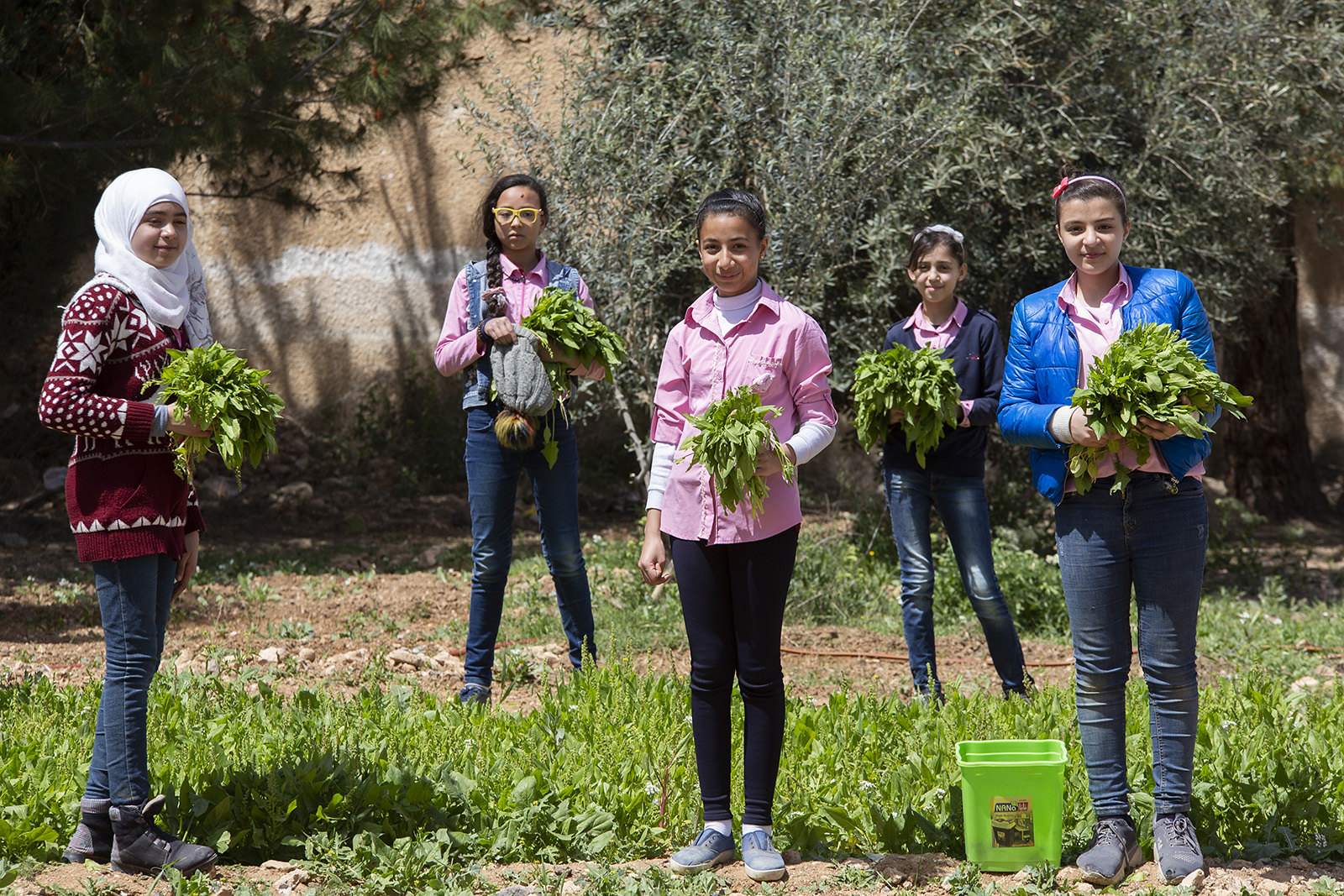 Students celebrate the taste of green leaves in the Syrian Arab Republic