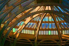 national museum of scotland roof