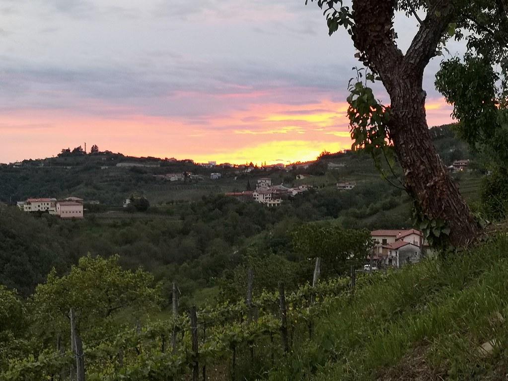 Auringonlasku viinitila slovenia