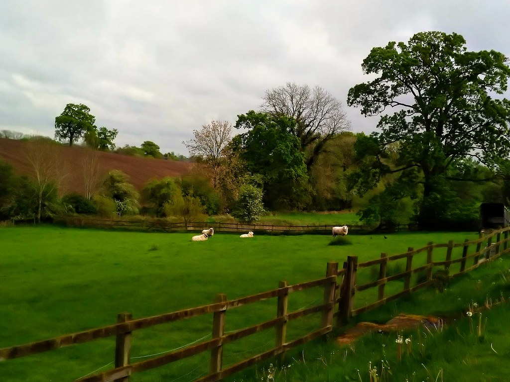 View from Cheshire Boutique Barns, Wrenbury, Cheshire