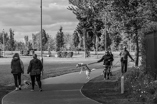 On a leash   by Cagey75