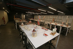 Prof. Dr. Nurettin Ali BERKOL Anatomi Maket Laboratuvarı 2