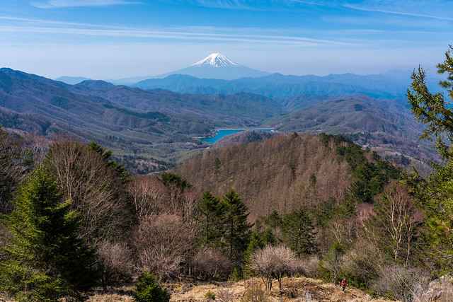 登って来た唐松尾根と富士山