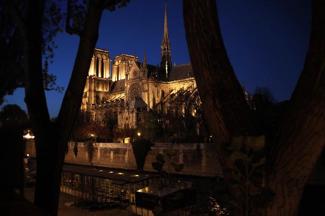 Notre Dame . Paris . November 2017