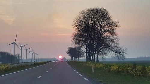 zonsopkomst sunrise onderweg ontheroad sunlight horizon trees bomenrij windturbines phonograpy
