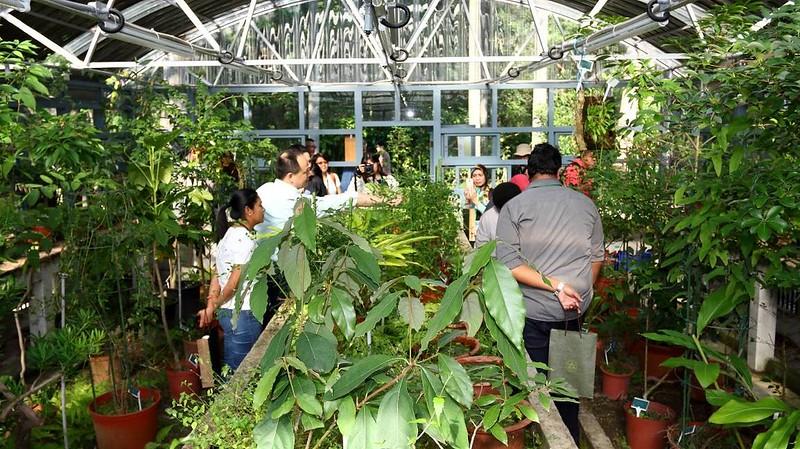 海外訪客探訪台北植物園的溫室。