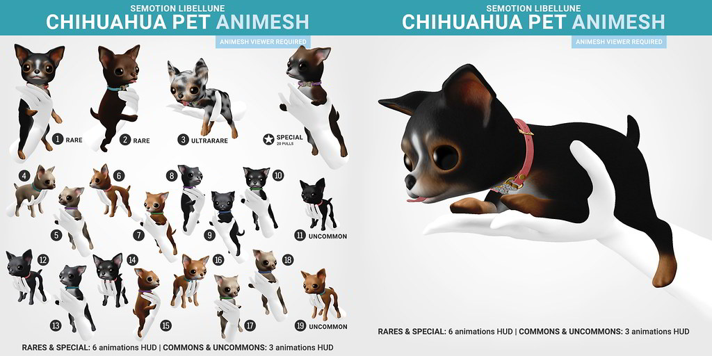 SEmotion Libellune Chihuahua Pet Animesh
