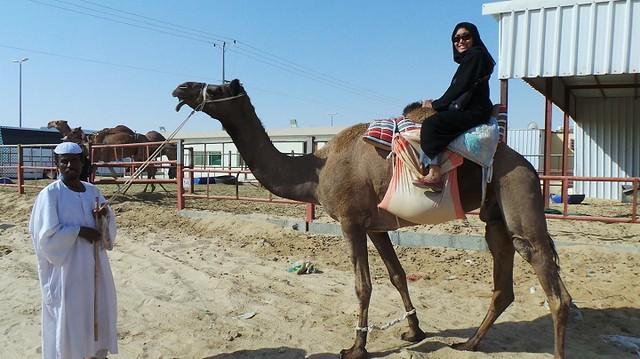 10 tourist places to visit in al ahsa and al hofuf life in saudi rh lifeinsaudiarabia net