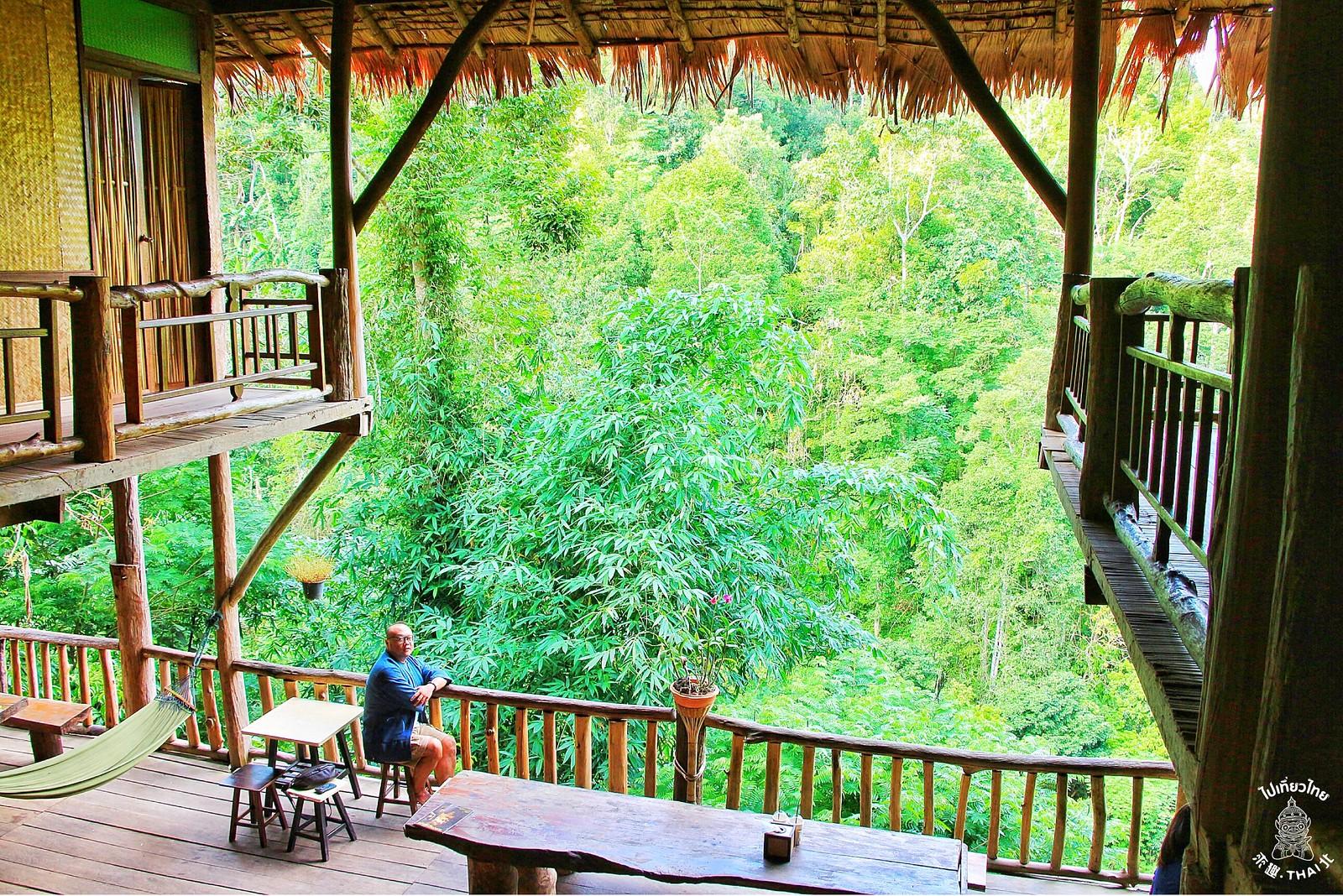 清道深山裡的樹屋民宿咖啡廳『Tree House Hideaway』