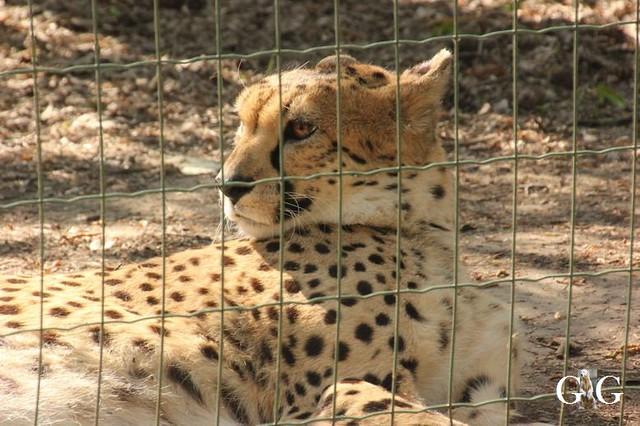 Besuch Zoo Rostock 22.+23.04.2019130