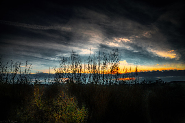 Sunset over countryside of Normandy, France-60a