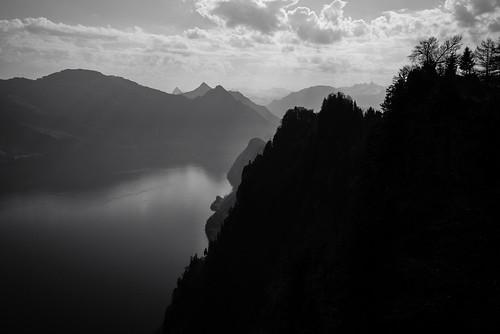 m2400664 rangefinder digitalrangefinder messsucher leicam leica mp typ240 type240 28mm elmaritm12828asph hiking wanderung randonnée escursione bürgenstock stansstadrütli nidwalden waldstätterweg vierwaldstättersee alps alpen switzerland schweiz suisse svizzera svizra europe bw monochrome schwarzweiss blackwhite lake clouds sky frühling spring karfreitag ©toniv 2019 190419 hammetschwand