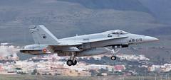 F-18 | C.15-81 | LPA | 20190408