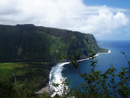 hawaii tropical plants nature coast ocean valley viewpoint waipio cliffs hills