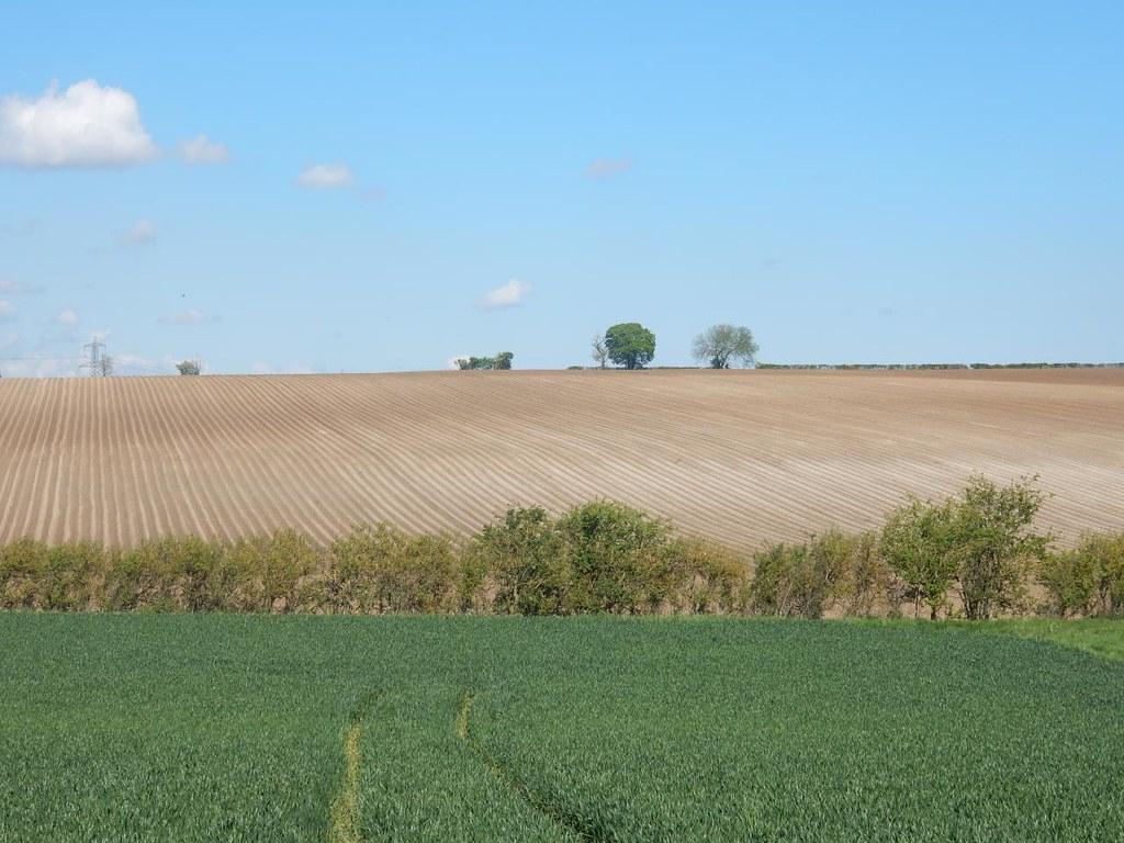 Ploughed field swcwalks swcwalk91 Baldock Circular